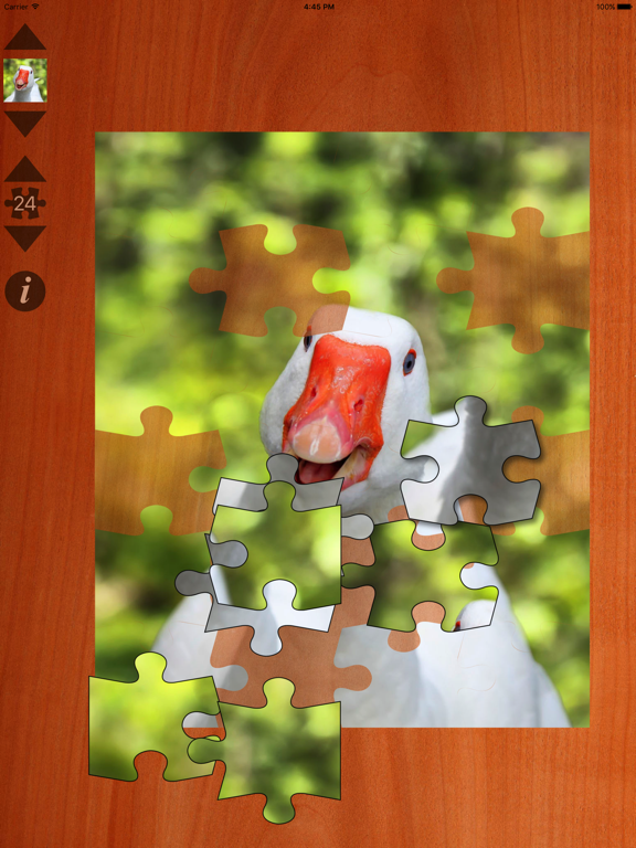 Jigsaws Gold Screenshots