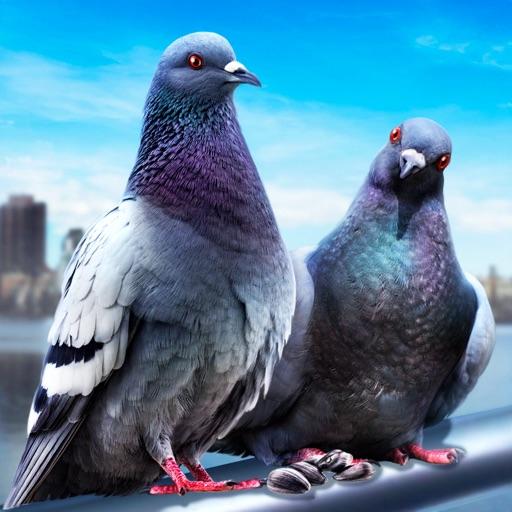 Pigeon Survival Simulator 3D 2