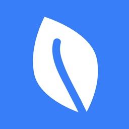 BlueVine Capital