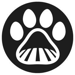 Farm Dog Scout