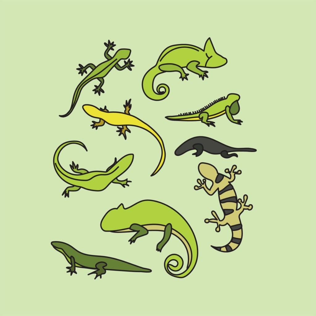Animals : Reptiles Quiz hack
