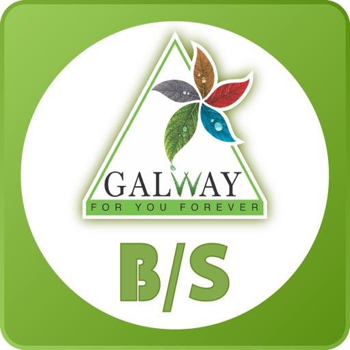Glaze Galway