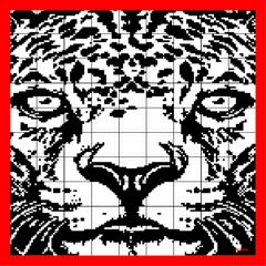Nonogram 9 (Picross Logic)