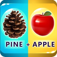 Codes for 2 Pics 1 Word - Guess Word Hack