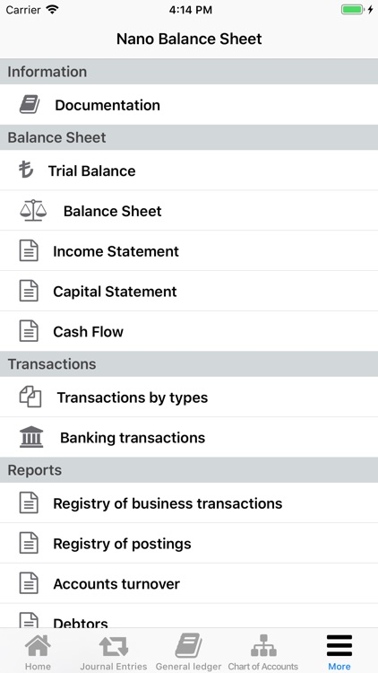 Nano Balance Sheet screenshot-4