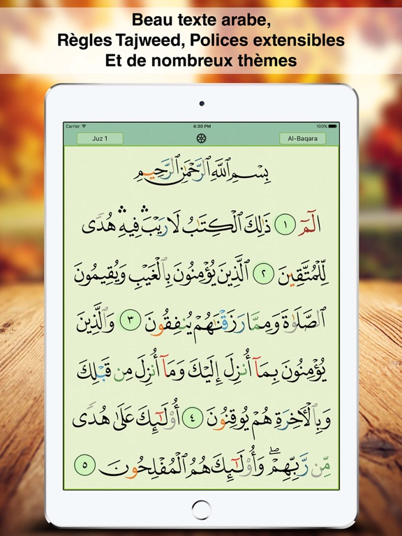 Screenshot #4 pour Coran Majeed Pro: القرآن