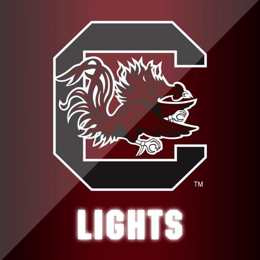 Gamecock Lights