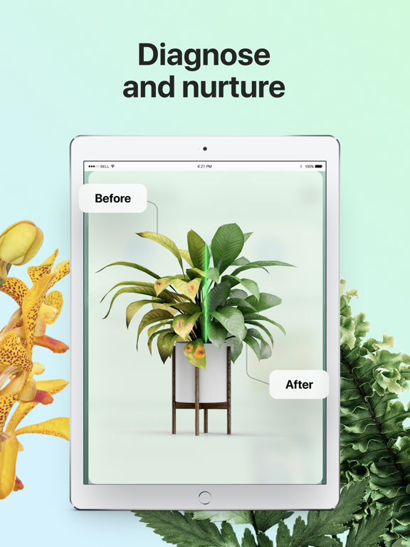 PictureThis - Plant Identifier screenshot