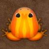 Pocket Frogs