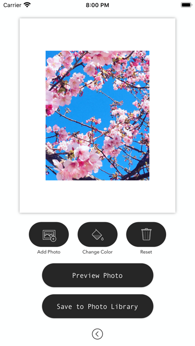 White Background Frame screenshot 2