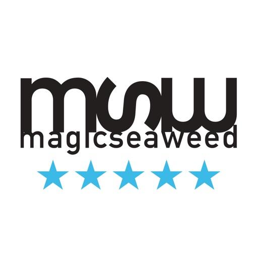 MSW 予測サーフ