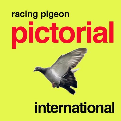 Racing Pigeon International
