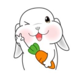 包子脸垂耳兔