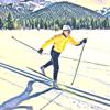 Cross Country Ski Montana