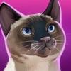CatHotel - 照顾可爱的小猫,抱抱它们,跟它们玩耍