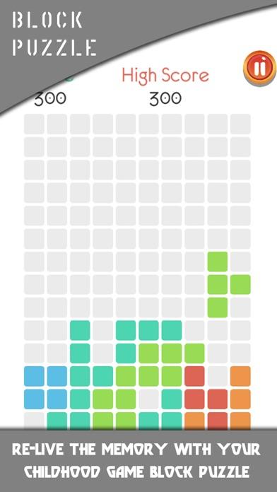 Blocks Puzzle 2019 screenshot 2