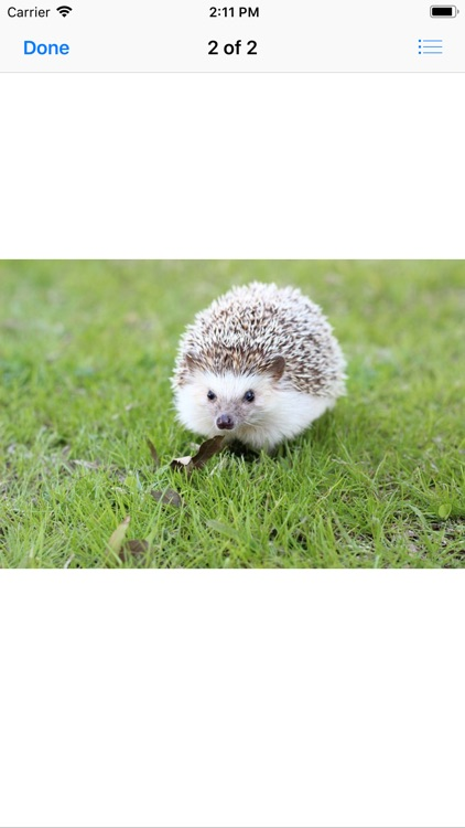 My Hedgehog Stickers screenshot-3