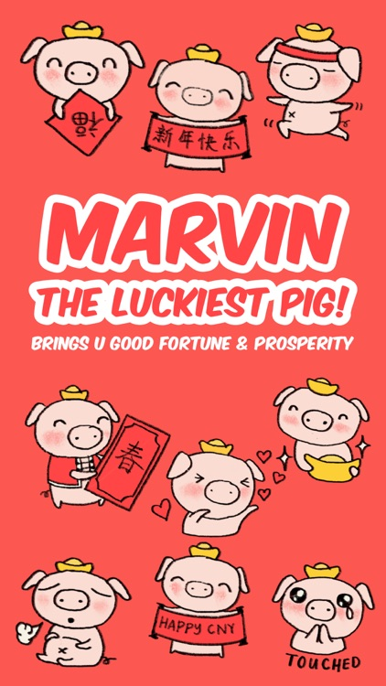 Marvin the Lucky Pig