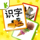 Chinese Flashcards for Baby icon
