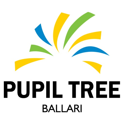 PUPIL TREE