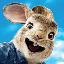 Peter Rabbit Run!