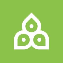 Rinpoche Buddhist