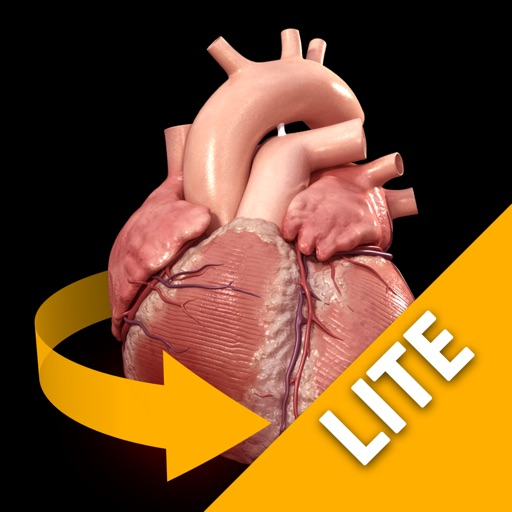 Heart - 3D Atlas of Anatomy Lite
