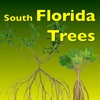 Southern Florida Trees