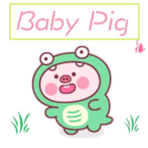 BabyPig+