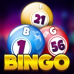 New Bingo World