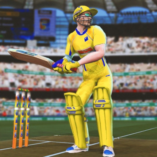 Play Cricket Games 2019