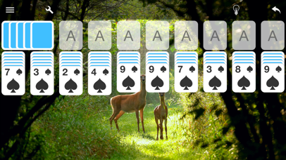 Spider Solitaire Card Game screenshot 3