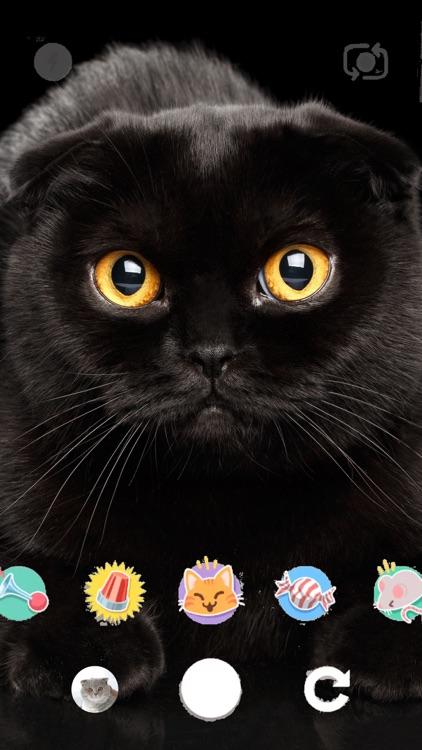 snapcat.