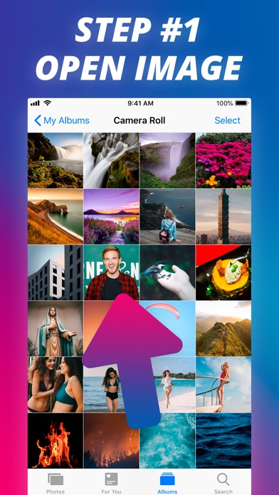 Screenshot for Reverse Image Search Extension in Germany App Store