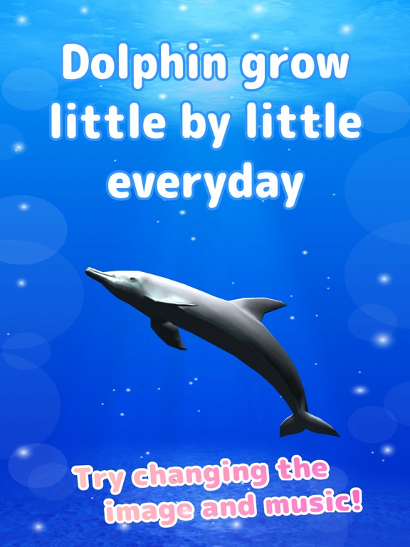 Tap Dolphin -simulation game- screenshot 8