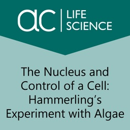 Nucleus and Control of a Cell
