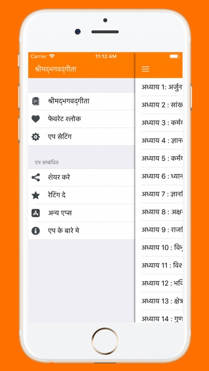 Bhagavad Gita in Hindi App screenshot-4