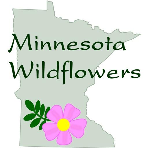 Minnesota Wildflowers Info.