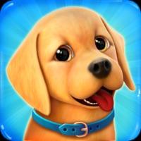 Dog Town: Pet Simulation Game free Diamonds hack