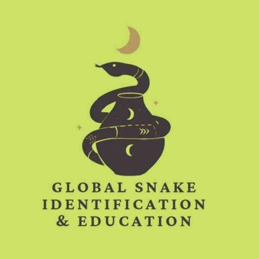 GSIE Snake Education