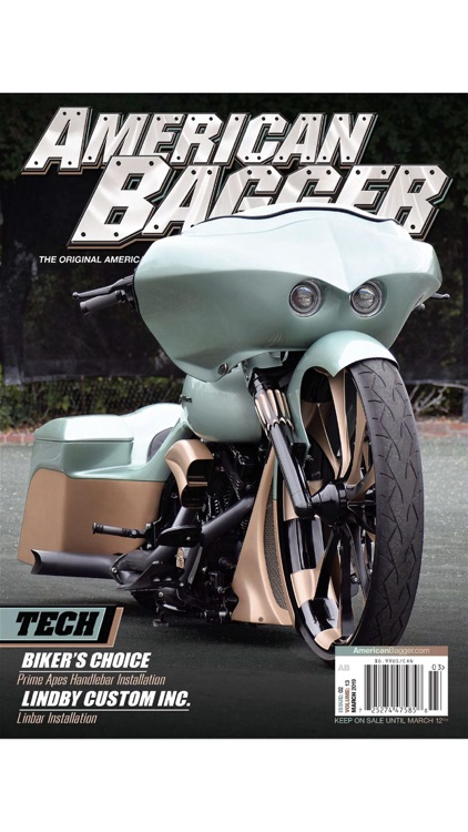 American Bagger screenshot-0