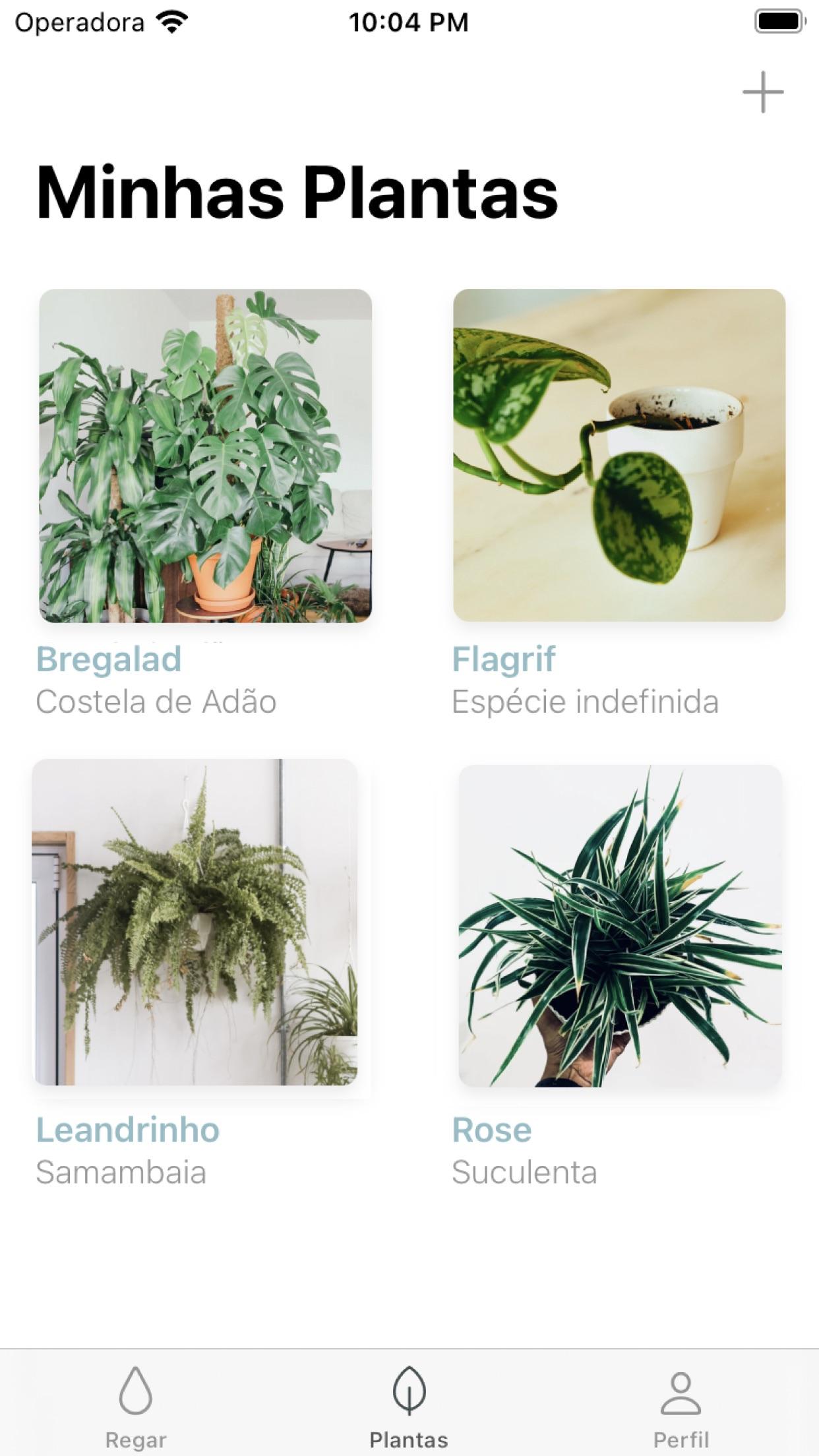 Screenshot do app Ginkgo App