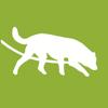Doegel GmbH - Tracking-Dog artwork