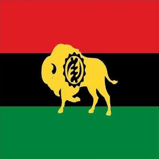 Black Buffalo Mobile