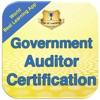 Government Audit fundamentals