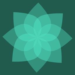 Meditate (Watch)