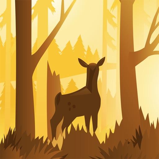 Wildfulness 2 - Звуки природы
