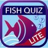 Fish Quiz 2019 Lite Reviews