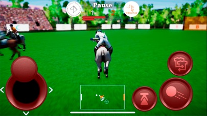 Screenshot for Polo Game in United States App Store