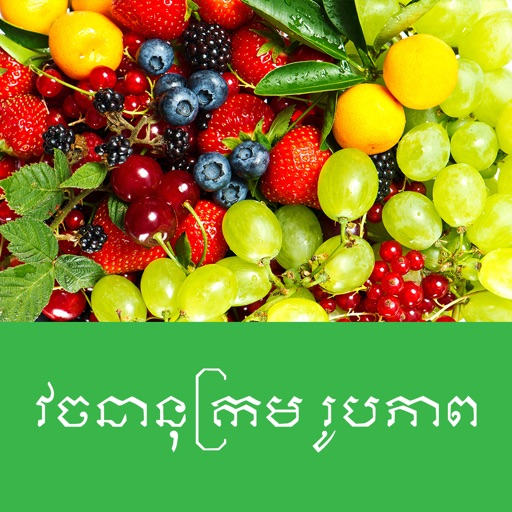 Khmer Picture Dictionary